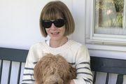 """Anna Wintour objavila fotografiju iz izolacije i poslala snažnu poruku: """"Pozitiva je sad dragocjena stvar"""""""