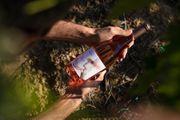 Čaroban Rose iz Kutjeva za osvježavajuće uživanje u ljetu
