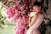 Uvijek Audrey