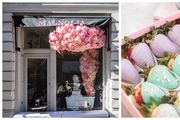 Zavirite u najljepši izlog u gradu: U omiljenu slastičarnicu Magnoliju stiglo je proljeće