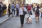 Nesvakidašnji prizor u srcu Rima: Gospođa u šetnju izvela svoju svinju Dior