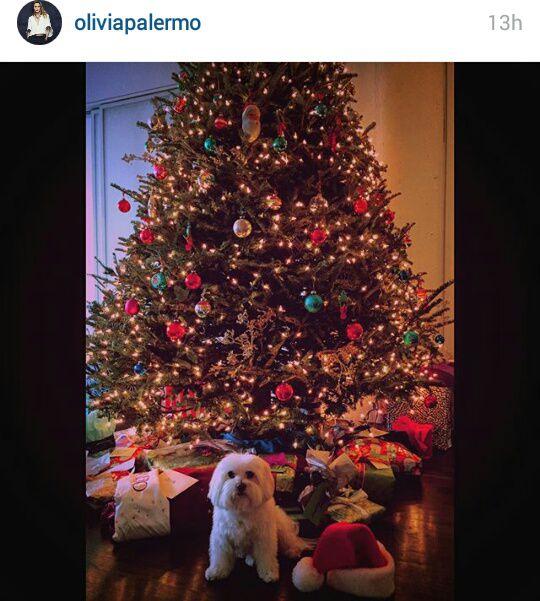 Božićna drvca poznatih fashionistica