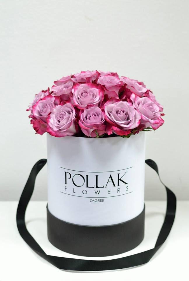Pollak - kutija koju želimo