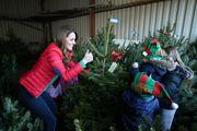 Vojvotkinja od Cambridgea u potrazi za božićnim drvcem oduševila je svojim blagdanskim izdanjem